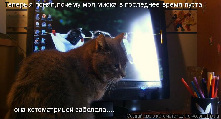 Котоматрица: Теперь я понял,почему моя миска в последнее время пуста : она котоматрицей заболела....