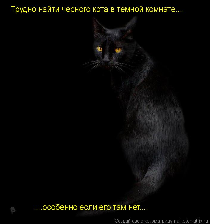 Котоматрица: Трудно найти чёрного кота в тёмной комнате.... ....особенно если его там нет....