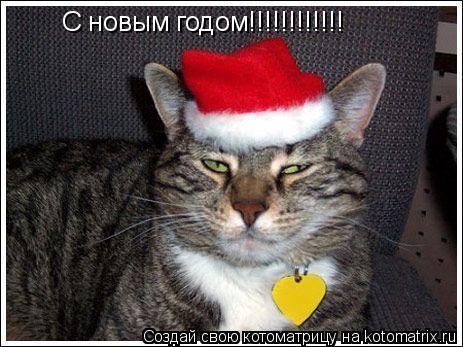 Котоматрица: С новым годом!!!!!!!!!!!!