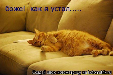 Котоматрица: боже!  как я устал.....