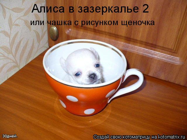 Котоматрица: Алиса в зазеркалье 2 или чашка с рисунком щеночка