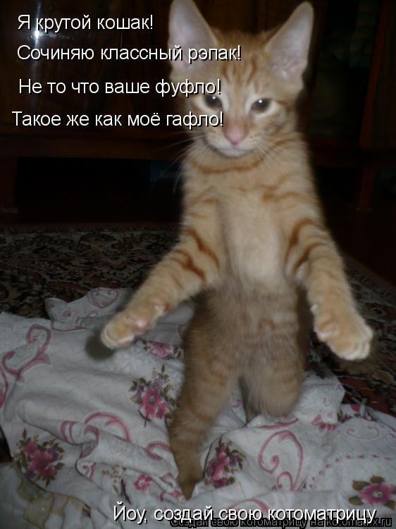 Котоматрица: Я крутой кошак! Сочиняю классный рэпак! Не то что ваше фуфло! Такое же как моё гафло! Йоу, создай свою котоматрицу