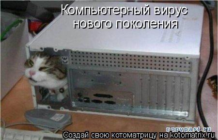 Котоматрица: Компьютерный вирус нового поколения