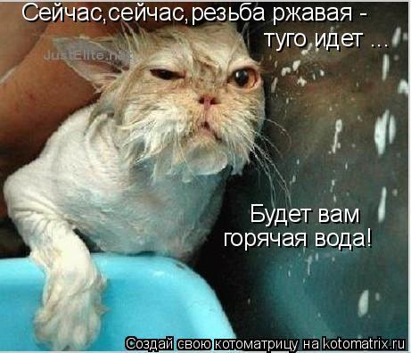 Котоматрица: Сейчас,сейчас,резьба ржавая -  туго идет ... Будет вам горячая вода!