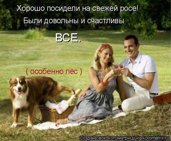 Котоматрица: Хорошо посидели на свежей росе! Были довольны и счастливы   ВСЕ. ( особенно пёс )
