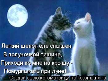 Котоматрица: Помурлыкать при луне! Приходи ко мне на крышу - В полуночной тишине, Легкий шепот еле слышен