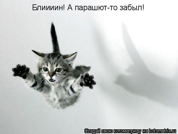 Котоматрица: Блиииин! А парашют-то забыл!