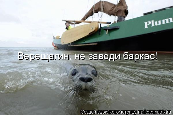 Котоматрица: Верещагин, не заводи баркас!