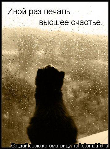 Котоматрица: Иной раз печаль –  высшее счастье.