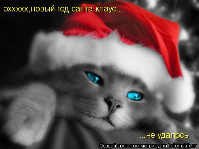 Котоматрица: эххххх,новый год,санта клаус... ...не удалось