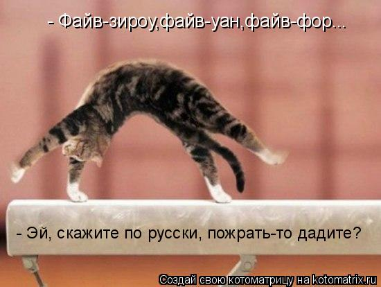 Котоматрица: - Файв-зироу,файв-уан,файв-фор... - Эй, скажите по русски, пожрать-то дадите?