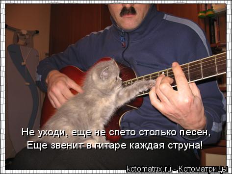 Котоматрица: Не уходи, еще не спето столько песен, Еще звенит в гитаре каждая струна!