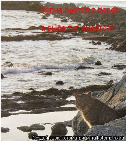 Котоматрица: Волна бьётся о берег а рыба тут имеется?