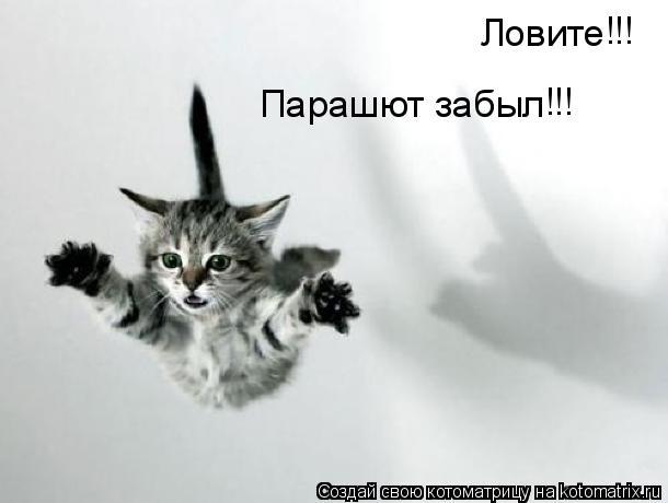 Котоматрица: Ловите Парашют забыл !!! !!!