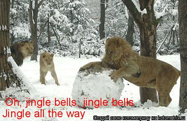 Котоматрица: Oh, jingle bells, jingle bells Jingle all the way