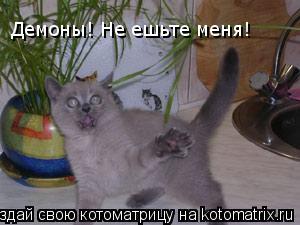 Котоматрица: Демоны! Не ешьте меня!