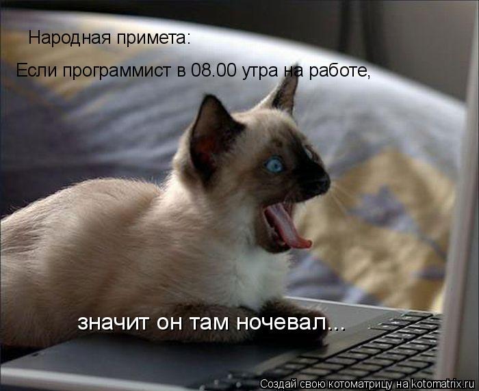 Котоматрица: Народная примета: Если пpогpаммист в 08.00 утpа на pаботе, значит он там ночевал...