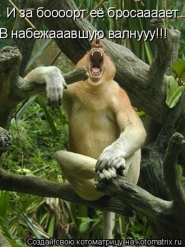 Котоматрица: И за боооорт её бросаааает В набежааавшую валнууу!!!