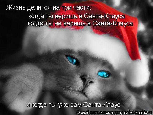 Котоматрица: Жизнь делится на три части:  когда ты веришь в Санта-Клауса когда ты не веришь в Санта-Клауса и когда ты уже сам Санта-Клаус