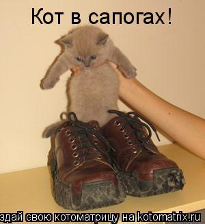 Котоматрица: Кот в сапогах!