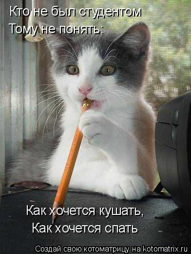 Котоматрица: Кто не был студентом Тому не понять: Как хочется кушать, Как хочется спать