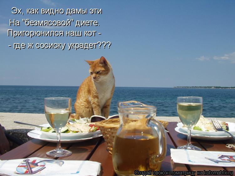 """Котоматрица: Эх, как видно дамы эти На """"безмясовой"""" диете. - где ж сосиску украдет??? Пригорюнился наш кот -"""