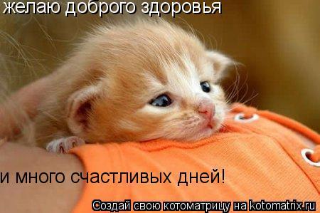 Котоматрица: желаю доброго здоровья и много счастливых дней!