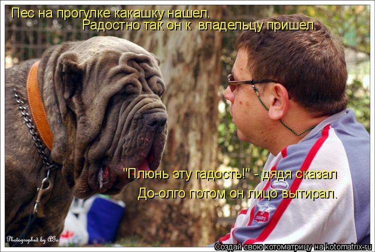 """Котоматрица: Пес на прогулке какашку нашел… Радостно так он к  владельцу пришел… """"Плюнь эту гадость!"""" - дядя сказал  До-олго потом он лицо вытирал…"""