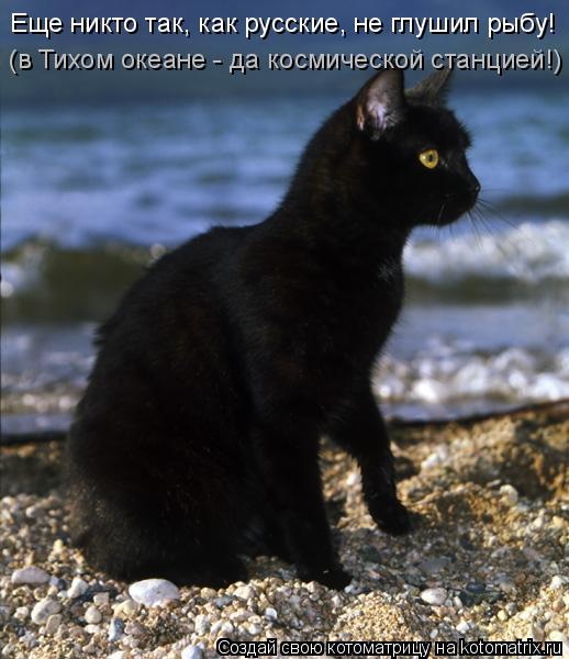 Котоматрица: Еще никто так, как русские, не глушил рыбу! (в Тихом океане - да космической станцией!)