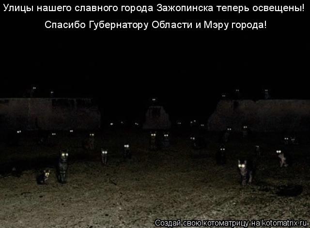 Котоматрица: Улицы нашего славного города Зажопинска теперь освещены! Спасибо Губернатору Области и Мэру города!