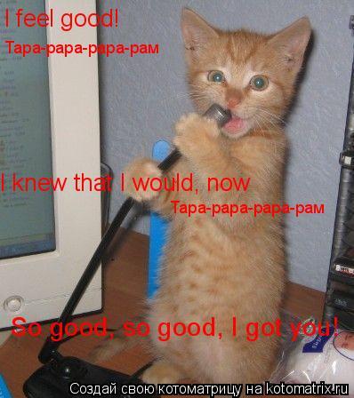 Котоматрица: I feel good! So good, so good, I got you! Тара-рара-рара-рам I knew that I would, now Тара-рара-рара-рам