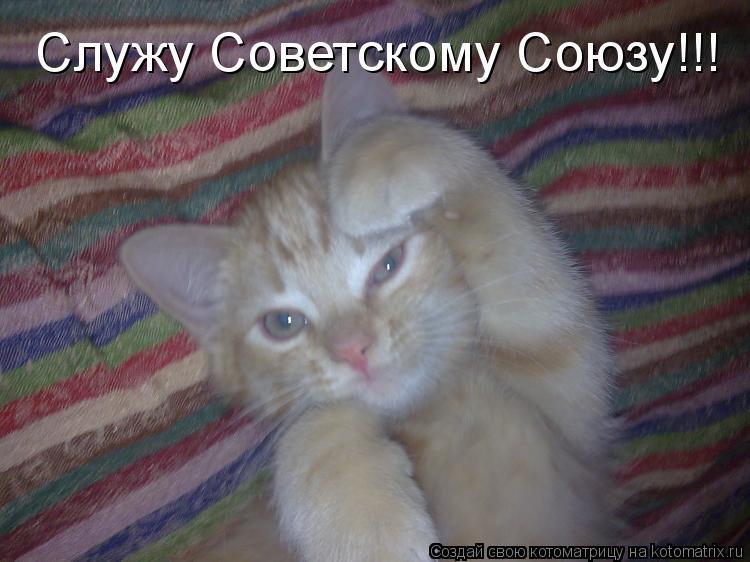 Котоматрица: Служу Советскому Союзу!!!