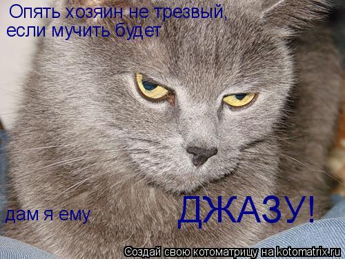 Котоматрица: Опять хозяин не трезвый, если мучить будет дам я ему ДЖАЗУ!