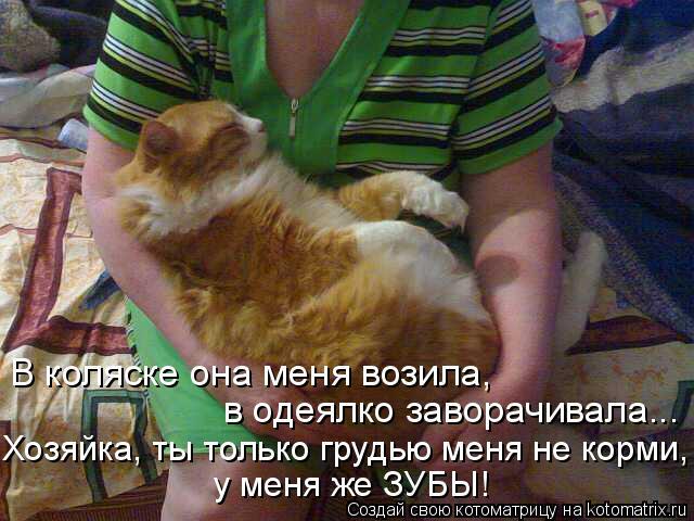 Котоматрица: В коляске она меня возила, в одеялко заворачивала... Хозяйка, ты только грудью меня не корми, у меня же ЗУБЫ!