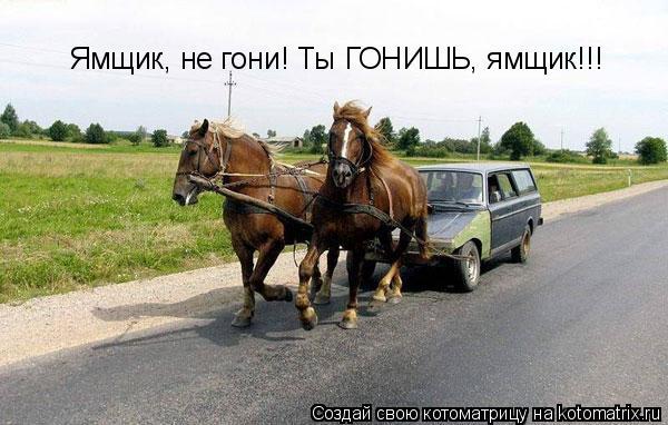 Котоматрица: Ямщик, не гони! Ты ГОНИШЬ, ямщик!!!