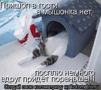 Котоматрица: Пришол в гости  а мышонка нет, посплю немного вдруг придёт пораньше!!!