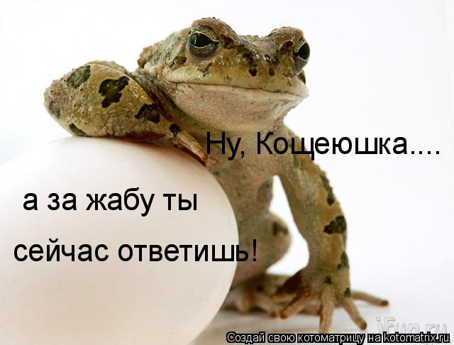 Котоматрица: Ну, Кощеюшка.... а за жабу ты сейчас ответишь!