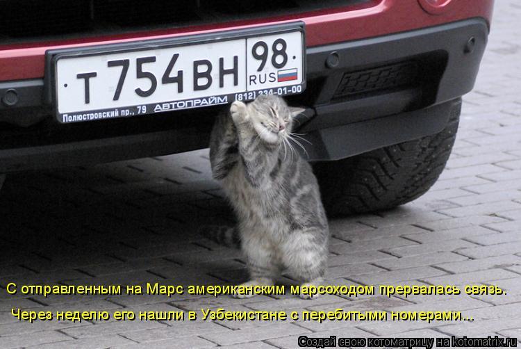 Котоматрица: С отправленным на Марс американским марсоходом прервалась связь.  Через неделю его нашли в Узбекистане с перебитыми номерами...