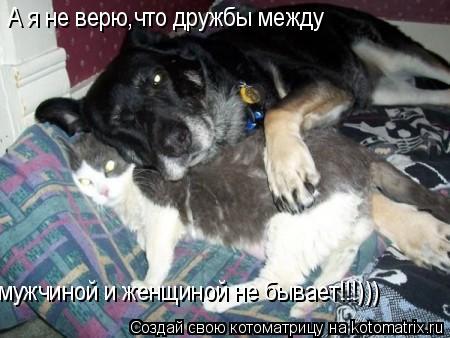 Котоматрица: мужчиной и женщиной не бывает!!!))) А я не верю,что дружбы между