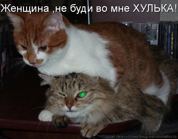Котоматрица: Женщина ,не буди во мне ХУЛЬКА!