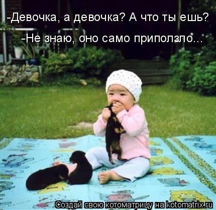 Котоматрица: -Девочка, а девочка? А что ты ешь? -Не знаю, оно само приползло...