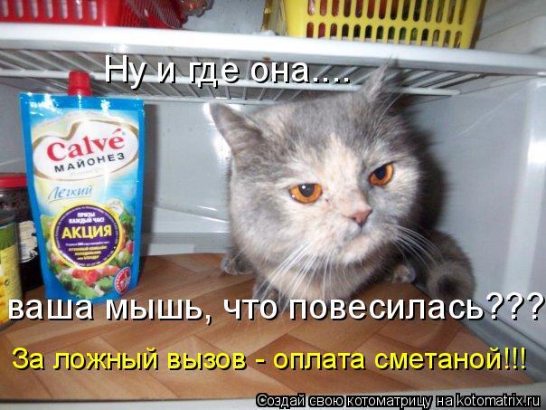 Котоматрица: Ну и где она.... ваша мышь, что повесилась??? За ложный вызов - оплата сметаной!!!