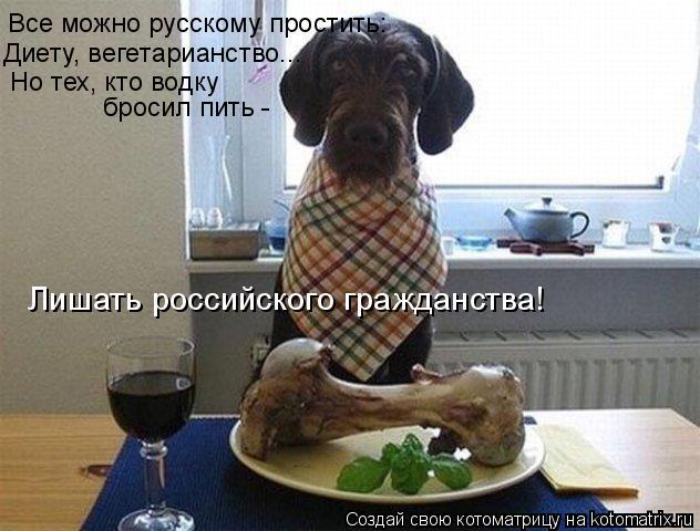Котоматрица: Все можно русскому простить: Диету, вегетарианство... Но тех, кто водку бросил пить - Лишать российского гражданства!