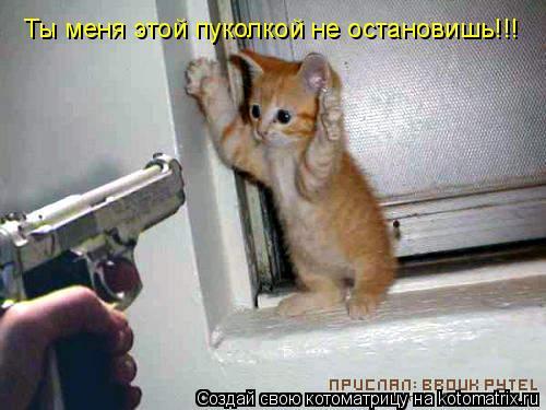 Котоматрица: Ты меня этой пуколкой не остановишь!!!