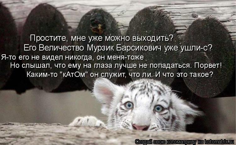 Котоматрица: Простите, мне уже можно выходить? Его Величество Мурзик Барсикович уже ушли-с? Я-то его не видел никогда, он меня-тоже Но слышал, что ему на гл