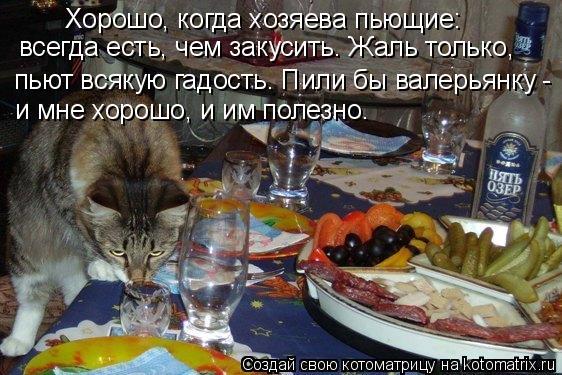 Котоматрица: Хорошо, когда хозяева пьющие:  всегда есть, чем закусить. Жаль только,  пьют всякую гадость. Пили бы валерьянку - и мне хорошо, и им полезно.