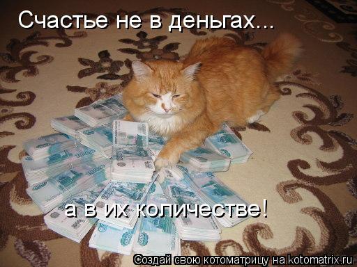 Котоматрица: Счастье не в деньгах... а в их количестве!