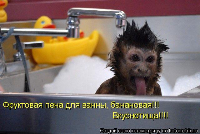 Котоматрица: Фруктовая пена для ванны, банановая!!! Вкуснотища!!!!