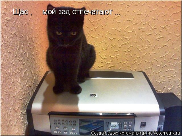 Котоматрица: Щас ,     мой зад отпечатают ...