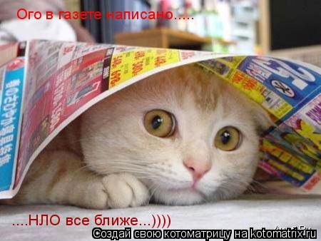 Котоматрица: Ого в газете написано..... ....НЛО все ближе...))))